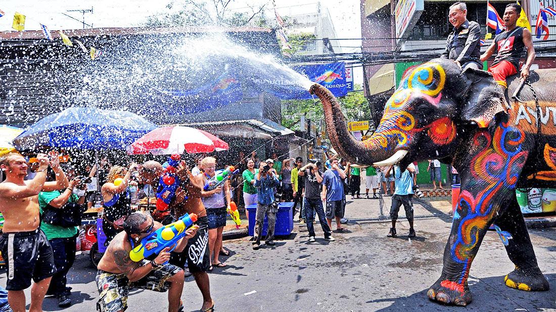 ソンクラーンで象が放水する様子