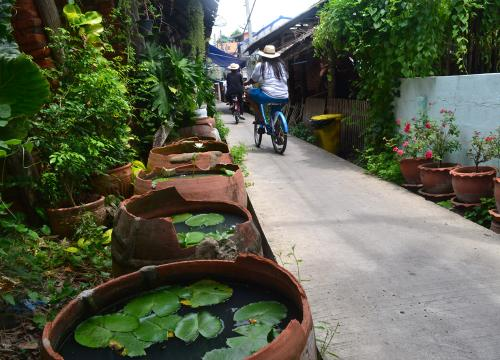 Bike-Rental-on-Koh-Khet-Island-near-Nonthaburi